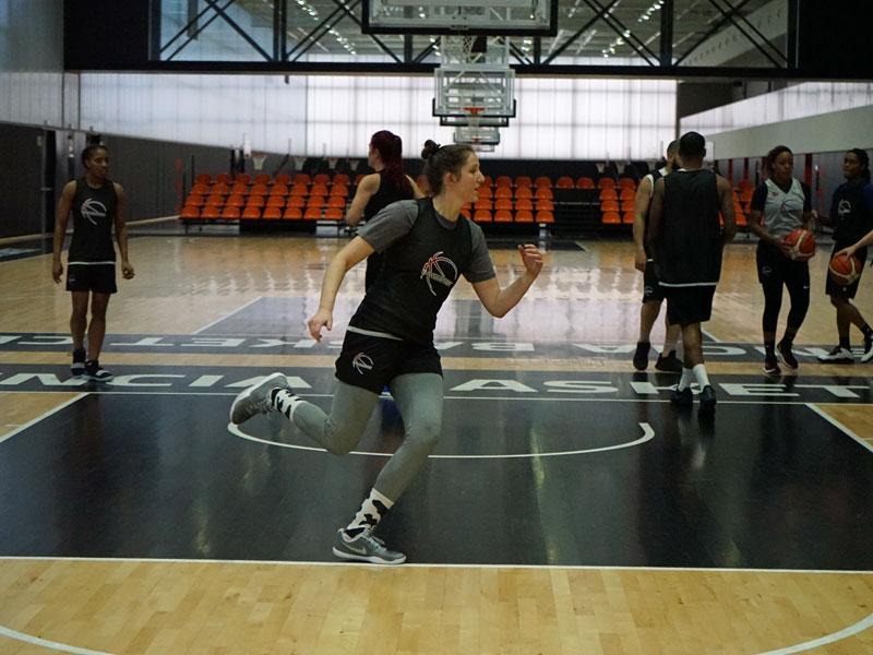 Allison Zalin Basketball Professional